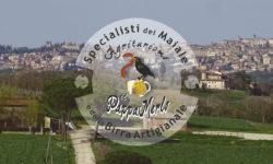 pappamerlo agriturismo a Perugia