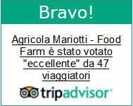 tripadvisor opinioni Food Farm